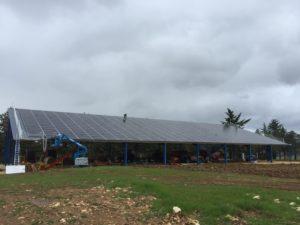 green photovoltaic farm shedone a free