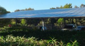 Optimisme solaire agricole photovoltaique